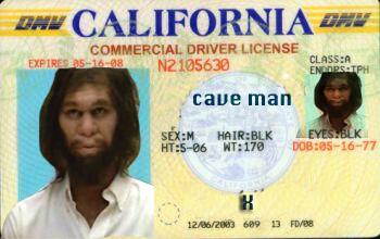 Fake License